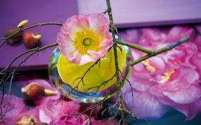 La Tavola Magazin, Decoration, Fruehling, Blumen, Marion Michels, Blueten