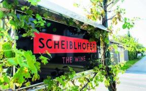 Scheibelhofer, Wein, Burgenland, Oesterreich, Weinberg, Traube,