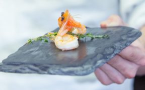 SwissShrimps, Schweiz, Shrimps, frisch, Geschmack, Fisch, Meer, Zucht